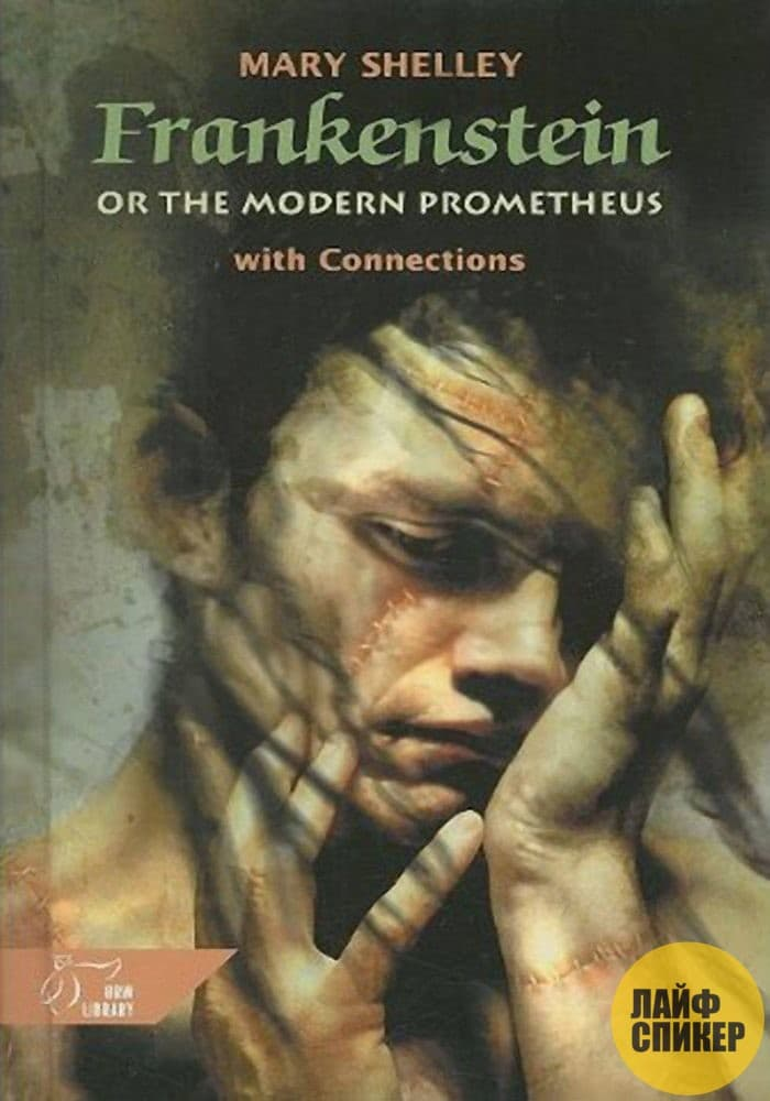 the themes of romanticism in frankenstein by mary shelley Romanticism it is evident that mary shelley was an author deeply embedded in the romanticism era as can be seen specifically in this novel, frankenstein at this time, this novel exceeded the works of the period by simply creating a sublime experience that was quite unfathomable in the 18th century.