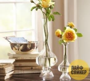 Как отмыть узкую вазу