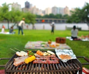 Top 8 lifhaki, jak ukončit sezónu pikniků