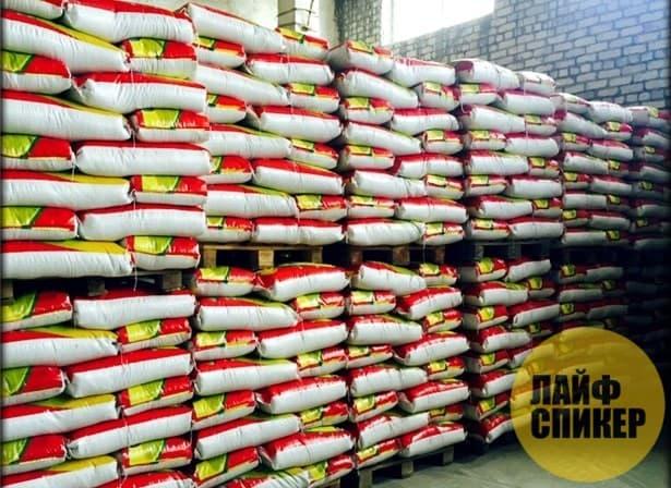 Рисовая компания в Казахстане