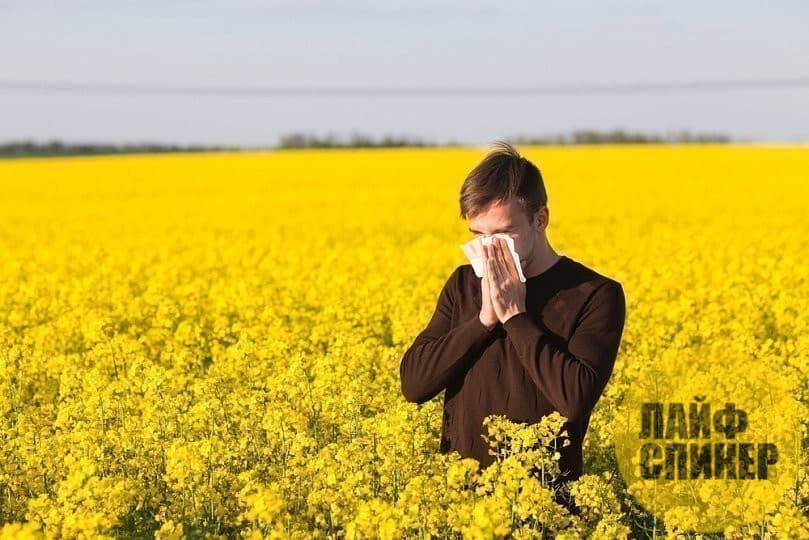 Как аллергикам обезопасить себя в сезон цветения