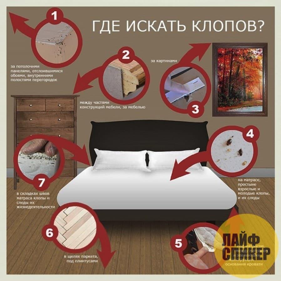 Уничтожение клопов в Москве и МО с гарантией
